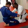Anthony Tesoro promoted to blue belt